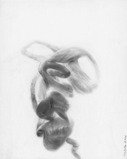 Deborah Zlotsky, 'Fruscherine', 2007