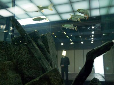 Pierre Huyghe, 'Installation view of the exhibition, Pierre Huyghe, at the Centre Georges Pompidou', September 2013 – January 2014