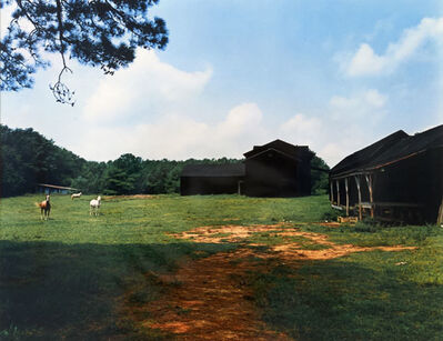 William Christenberry, 'Horse and Black Buildings, Newbern, Alabama', 1978