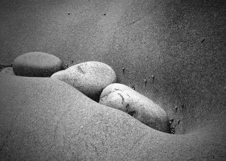 Marty Bannan, 'Pod on Stone Peas', 2004