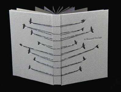 Rhiannon Alpers, 'A Thousand Starlings', 2017