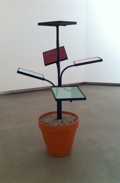 Markus Hofer, 'Blumenständerblume', 2013