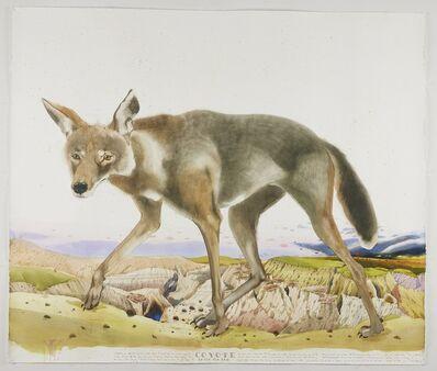 Scott Kelley (b. 1963), 'Coyote - Lost in Ah-Shi-Sle-Pah', 2021