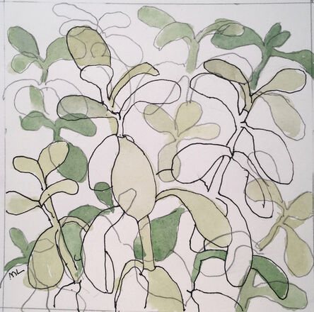Mary Lawler, 'Jade Plant', 2017