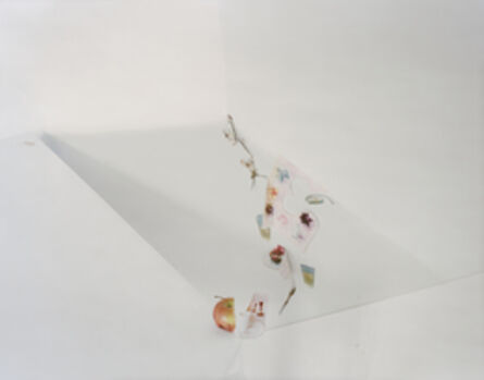 """Laura Letinsky, 'Untitled #28, from the series """"Ill Form & Void Full""""'"""