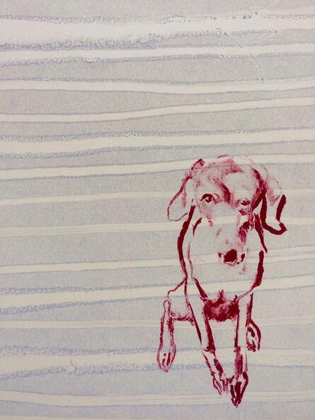 Shelly Tregoning, 'Studio Dog', 2017