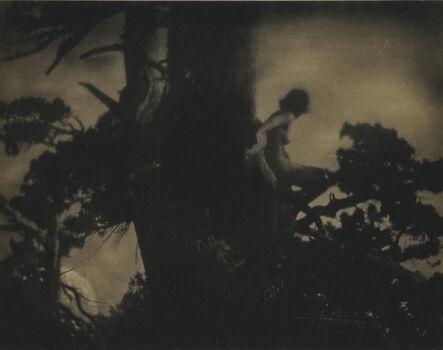 Anne Brigman, 'The Pine Sprite', 1911
