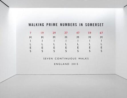 Richard Long, 'Walking Prime Numbers in Somerset', 2015