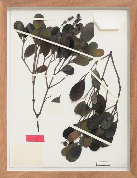 KATRIN COETZER, 'Botanical El Dorado ', 2019