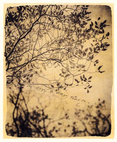 Brigitte Carnochan, 'The Happy–Happy Leaves', 2018