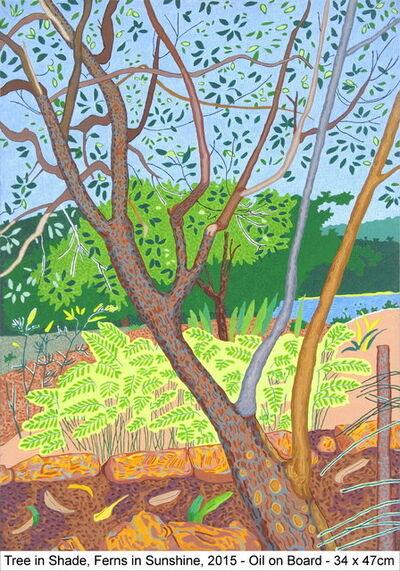 Jacqueline Balassa, 'Tree in Shade, Ferns in Sunshine', 2015