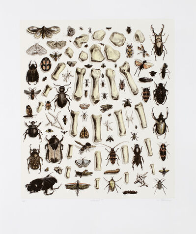 Walter Oltmann, 'Collected I', 2012