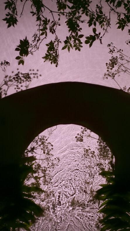 Susan Derges, 'Wild Garlic Bridge', 2013