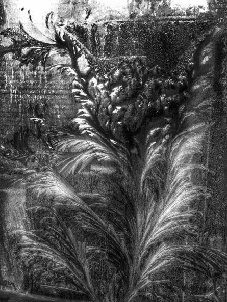 Xie Hong Dong, 'Garden 花園', 2015