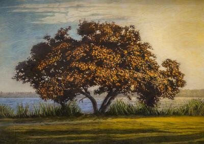 Stephen Hutchings, 'Fire Tree', 2015