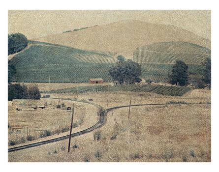 John Huggins, 'Vineyard, California', 2013