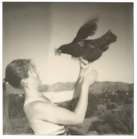 Stefanie Schneider, 'Fly! (Chicks and Chicks and sometimes Cocks)', 2017