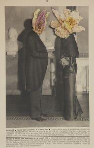 Lien Botha, 'Plant Press Waterlilies', 2009
