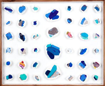 Denise Schellmann, 'Butterfly collection III', 2020