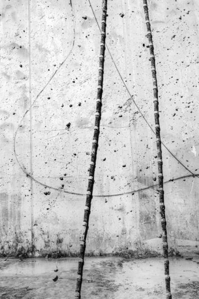 Gin Rimmington Jones, 'Metamorphosis, 1', 2020