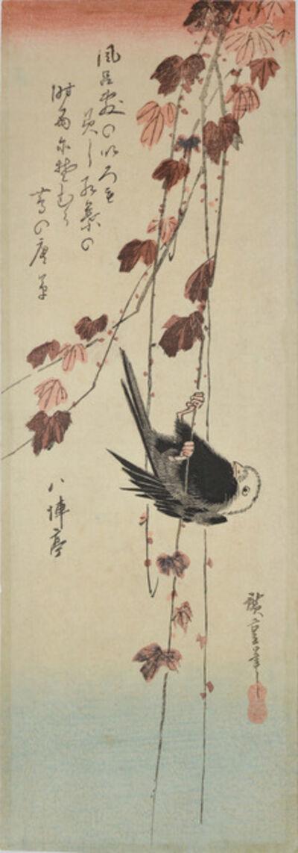 Utagawa Hiroshige (Andō Hiroshige), 'Creeping Vine and Long Tailed Tit in Autumn', ca. 1835