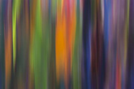 Damián Hernández, 'Corteza, Colores en Movimiento - Filage I', 2015
