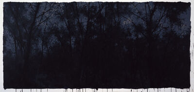 Pan Jian 潘剑, 'The Darkness in an Ideal - 4', 2012