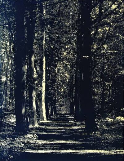 Katsutoshi Yuasa, 'Whereof one cannot speak, thereof one must be silent', 2014