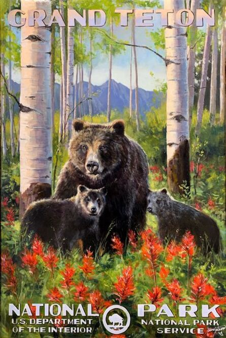 Jennifer Johnson, 'Grand Teton National Park | Grizzly 399', 2019