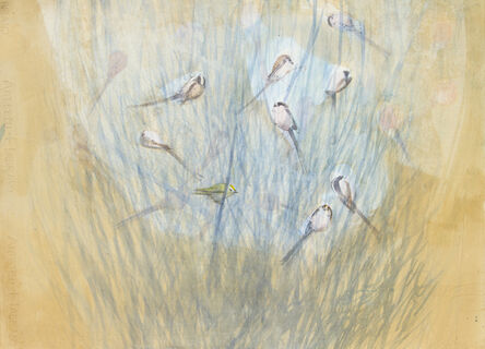 Claire Harkess, 'Goldcrest Amongst Long Tailed Tits', 2020