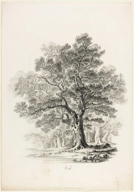 John Martin (1789-1854), 'Oak', 1817