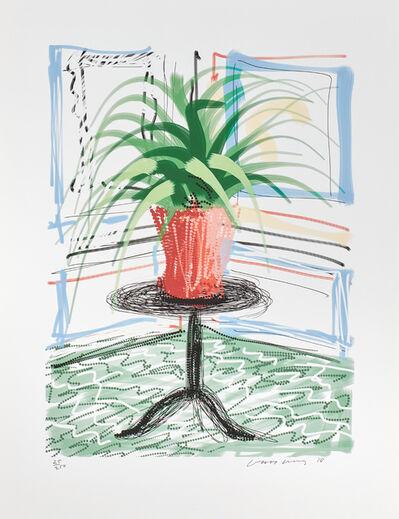 David Hockney, 'A Bigger Book, Art Edition C', 2010/2016