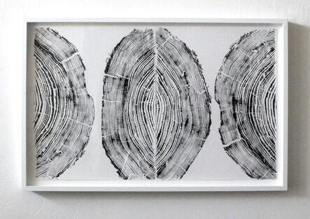 Andre Mirzaian, 'Cedar Triptych', 2016