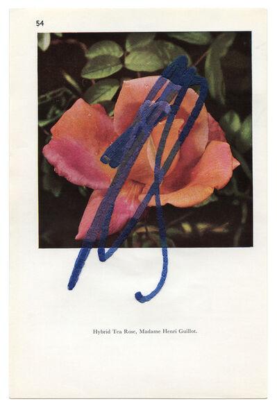 Julie Cockburn, 'Scribble Rose 2', 2020