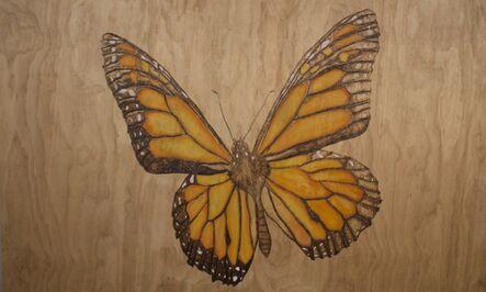 Alexander Kuhn, 'Transparency - Monarch Butterfly '
