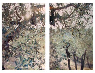 Joann Verburg, 'Something New Near Bazzano', 2000