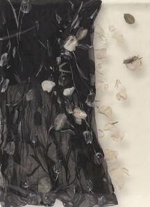 Barbara Salvucci, 'Attimi di polvere', 2007
