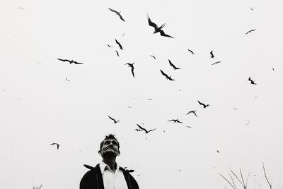 Graciela Iturbide, 'El señor de los pájaros', 1984