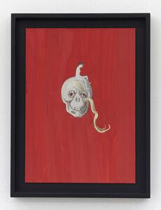Aleksandra Waliszewska, 'Untitled (Scull)', 2011-13