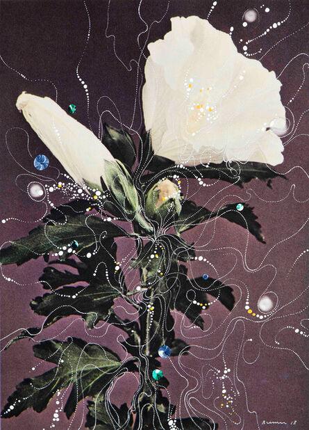 Sebastiaan Bremer, 'Hibiscus Syriacus Totus Albus, ', 2018