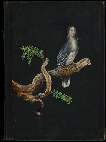 Jenny Honnert Abell, 'Book Cover No. 151', 2014