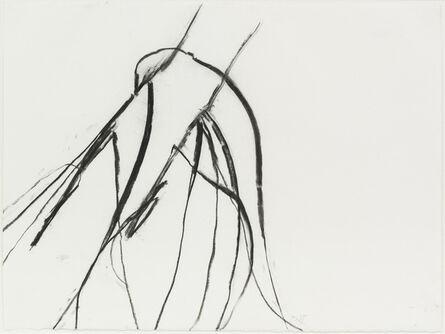 Susan Hartnett, 'Nov. 26 2011 #2, Blue lyme grass (Leymus arenarius)', 2011