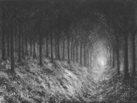 Raquel Maulwurf, 'Dark forest VI ', 2016