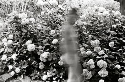 Chris Lowell, '31 Days Triptych #2 of 3', 2011