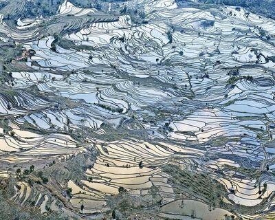 David Burdeny, 'Rice Terraces, (Laohuzui I), Yunnan, China', 2013