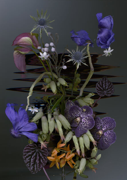Sandra Kantanen, 'Distortion 6', 2017