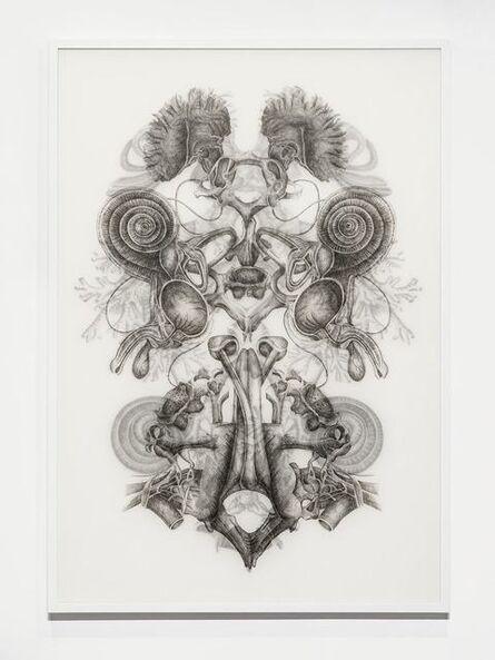 Angela Su, 'Rorschach Test No.3', 2016