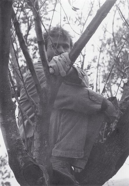 Tadej Pogačar, 'In the Nest', 1986