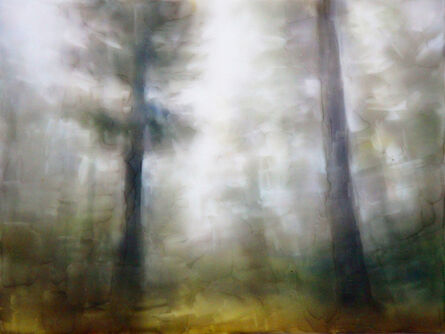 Brian Sostrom, 'Timbered ', 2020