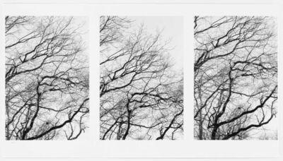 Burt Barr, 'Winter', 2013
